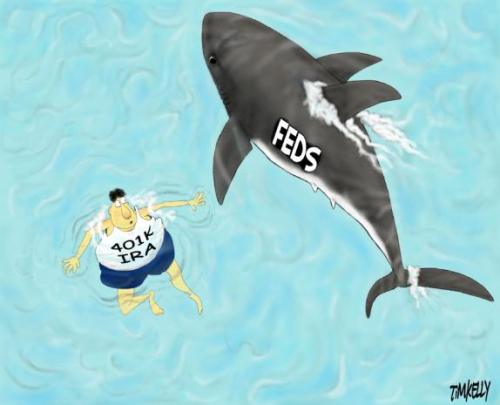 Fed Shark 401k