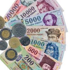 Hungary-Economy-Forint