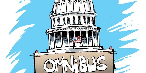 Here Comes The Ramming (Ominbus Spending Bill)